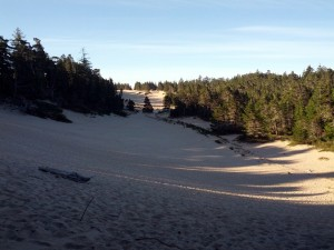200' high sand dunes near Florence, OR
