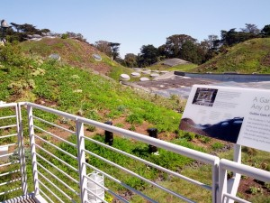 A closeup view of the green roof.